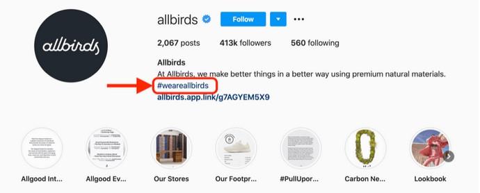 all birds instagram hashtag in bio